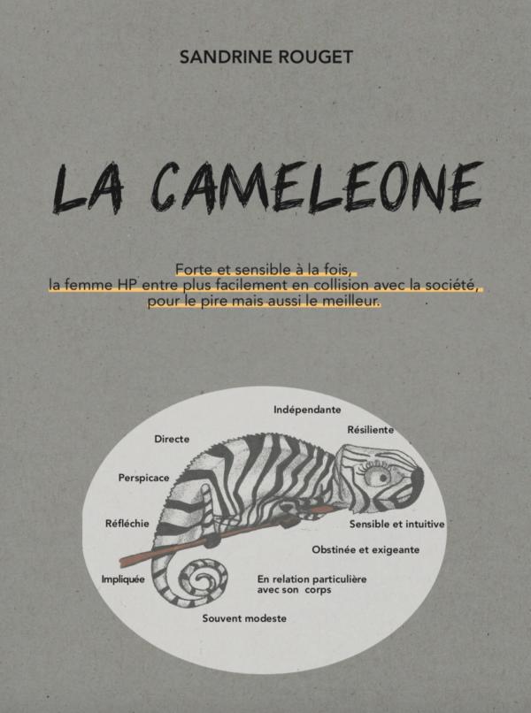 Le nouveau livre de Sandrine Rouget