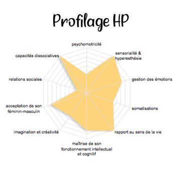 Test de profilage HP, Sandrine Rouget